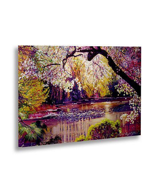 """Trademark Global David Lloyd Glover 'Central Park Pond' Floating Brushed Aluminum Art - 22"""" x 16"""""""