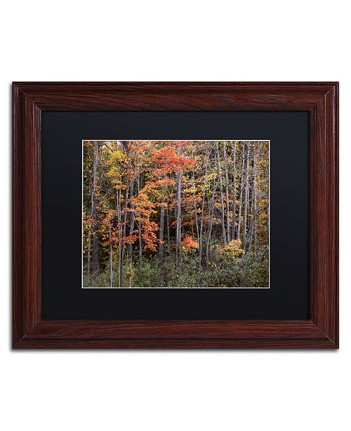 """Trademark Global Jason Shaffer 'Autumn Tree Line' Matted Framed Art - 14"""" x 11"""""""