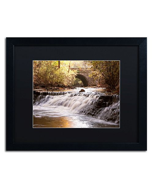 "Trademark Global Jason Shaffer 'Avon Falls' Matted Framed Art - 20"" x 16"""