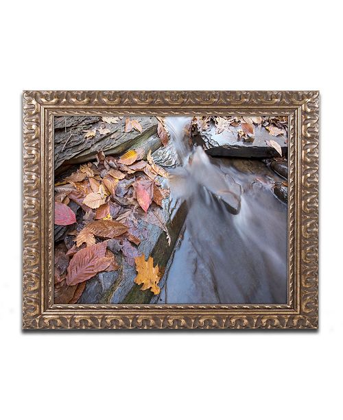 "Trademark Global Jason Shaffer 'Chance Creek 1' Ornate Framed Art - 20"" x 16"""