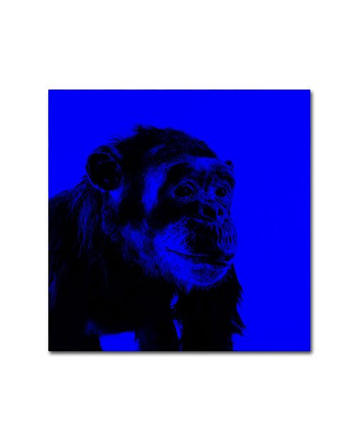 """Trademark Global Claire Doherty 'Chimp No 1' Canvas Art - 14"""" x 14"""""""