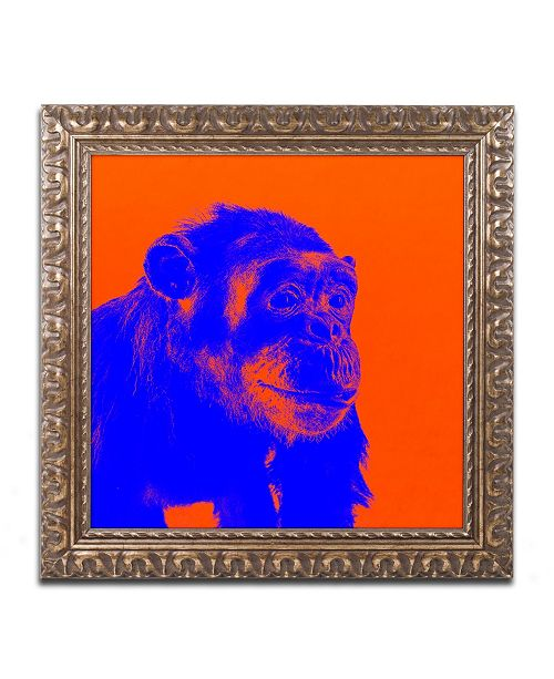 """Trademark Global Claire Doherty 'Chimp No 6' Ornate Framed Art - 11"""" x 11"""""""