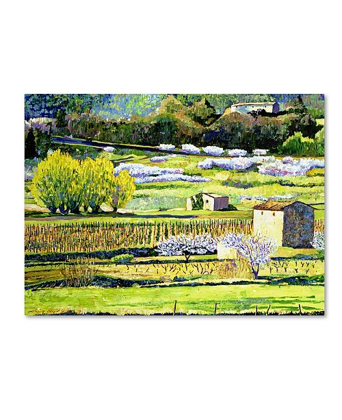 "Trademark Global David Lloyd Glover 'Bordeaux Vineyards in Spring' Canvas Art - 47"" x 35"""