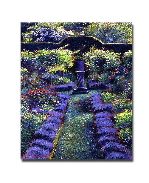 "Trademark Global David Lloyd Glover 'Blue Garden Sunset' Canvas Art - 24"" x 18"""