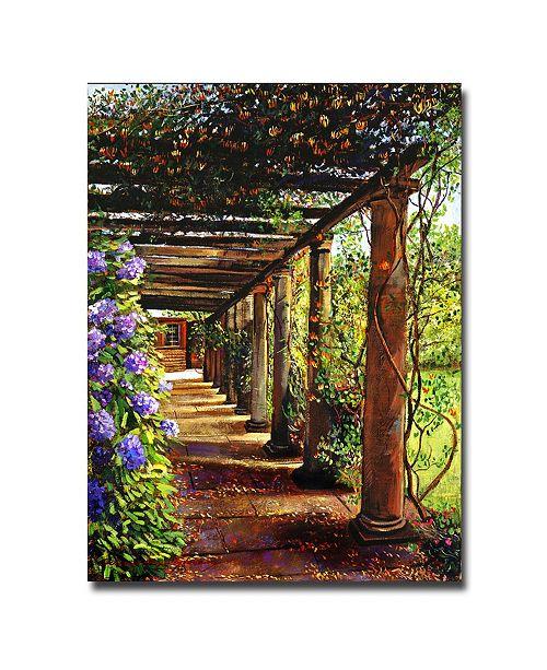 "Trademark Global David Lloyd Glover 'Pergola Walkway' Canvas Art - 24"" x 18"""