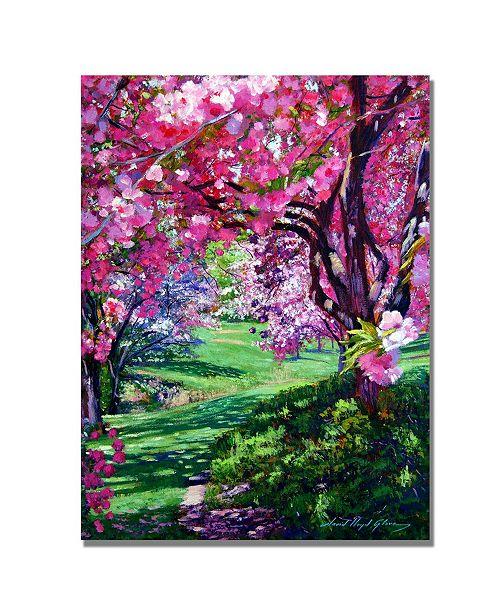 "Trademark Global David Lloyd Glover 'Sakura Romance' Canvas Art - 32"" x 26"""
