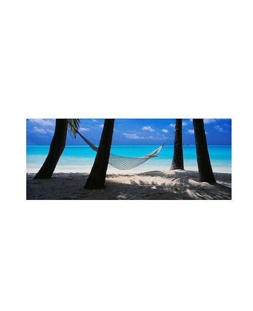 "Trademark Global David Evans 'Island Bliss' Canvas Art - 24"" x 8"""