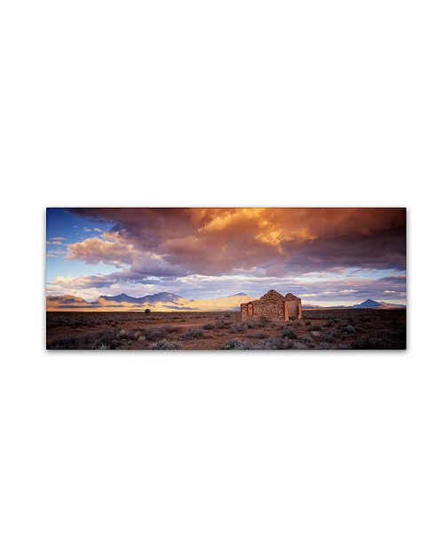 "Trademark Global David Evans 'Edeowie-Flinders Ranges' Canvas Art - 32"" x 10"""