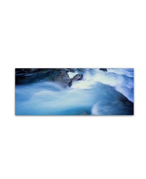 "Trademark Global David Evans 'Hollyford River Rapids-NZ' Canvas Art - 24"" x 8"""