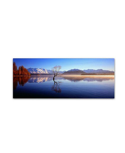 "Trademark Global David Evans 'Lake Wanaka-NZ' Canvas Art - 47"" x 16"""