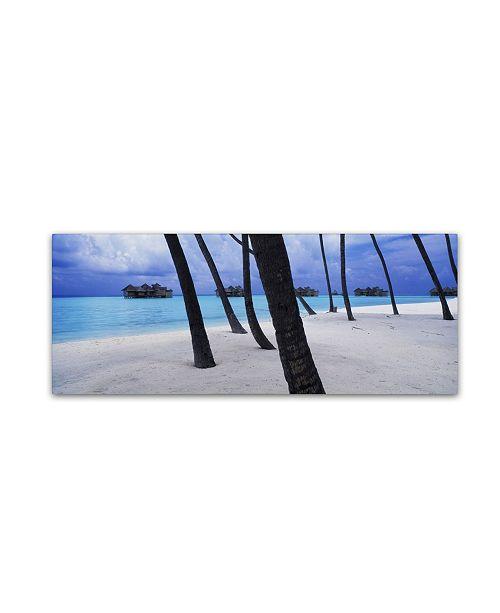 "Trademark Global David Evans 'Beach Palms-Maldives' Canvas Art - 6"" x 19"""