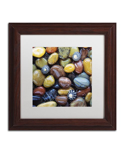 "Trademark Global David Evans 'Shells & Pebbles' Matted Framed Art - 11"" x 11"""