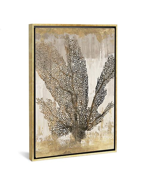 """iCanvas Coral Splendor I by Aimee Wilson Gallery-Wrapped Canvas Print - 40"""" x 26"""" x 0.75"""""""