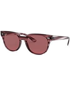 Sunglasses, RB4368N 39