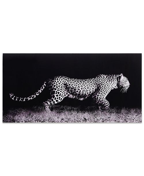 """Empire Art Direct 'Fearless 1' Frameless Free Floating Tempered Glass Panel Graphic Wall Art - 24"""" x 48''"""