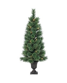 3.5Ft. Potted Deluxe Hard Needle Cashmere Pine with 50 Clear Lights