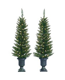 4Ft. Potted Cedar Pine Trees with 100 Clear Lights - Set of 2