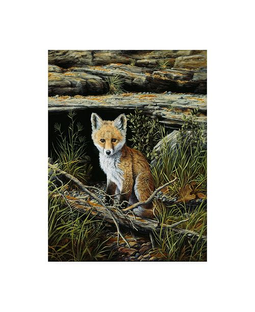 "Trademark Global R W Hedge Anticipation Baby Fox Canvas Art - 15.5"" x 21"""