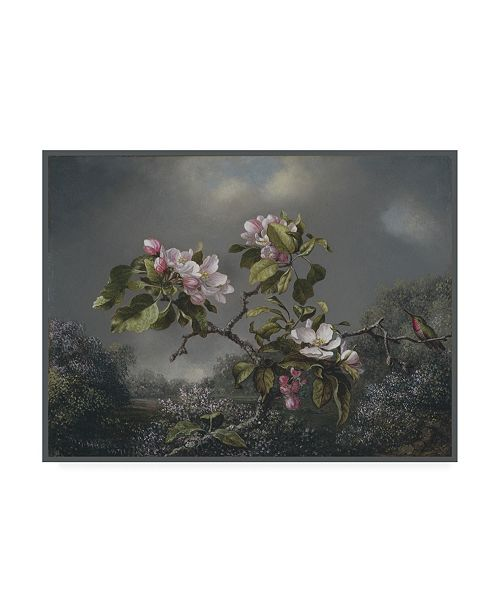"Trademark Global Martin Johnson Heade Apple Blossoms and Hummingbird Canvas Art - 36.5"" x 48"""