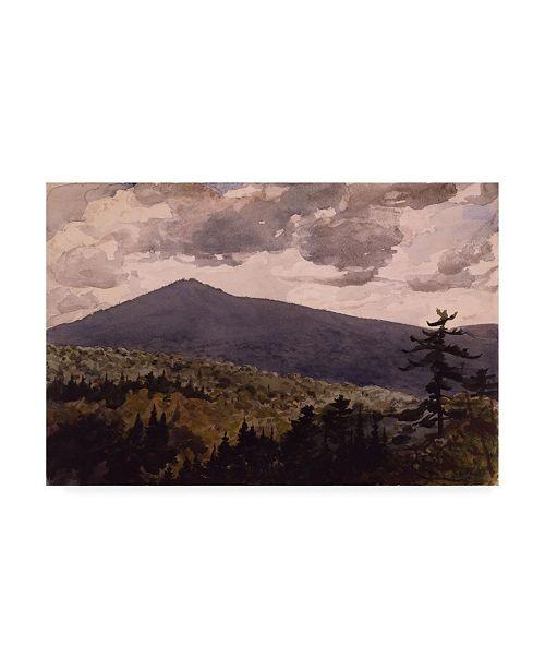 """Trademark Global Winslow Homer Burnt Mountain Canvas Art - 36.5"""" x 48"""""""