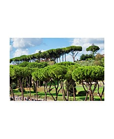 "Philippe Hugonnard Dolce Vita Rome Green Trees Canvas Art - 36.5"" x 48"""