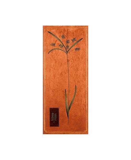 "Trademark Global Pablo Esteban Ornamental Grass on Orange Canvas Art - 27"" x 33.5"""