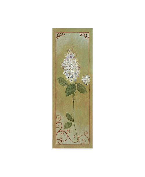 "Trademark Global Pablo Esteban White Lilac with Scroll Border Canvas Art - 36.5"" x 48"""