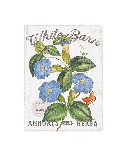 """Trademark Global Sue Schlabach White Barn Flowers II Canvas Art - 36.5"""" x 48"""""""