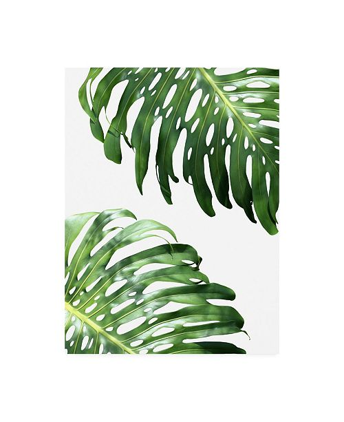 "Trademark Global Lexie Gree Double Philodendron (color) Canvas Art - 27"" x 33.5"""