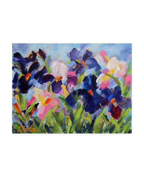 """Trademark Global Pamela Gaten The Iris Show Canvas Art - 27"""" x 33.5"""""""