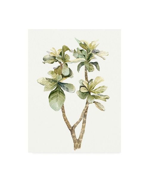 """Trademark Global Megan Meagher Tropical Watercolor Leaves III Canvas Art - 20"""" x 25"""""""