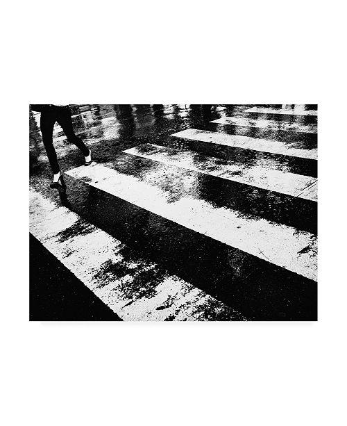 "Trademark Global Tatsuo Suzuki Wet Crossing Canvas Art - 20"" x 25"""