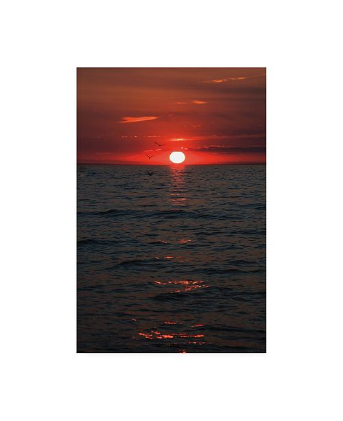 "Trademark Global Kurt Shaffer Three Seagull Sunset Canvas Art - 15"" x 20"""