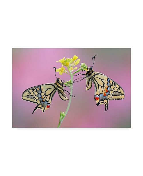 """Trademark Global Roberto Aldrovandi Incontro Romantico Canvas Art - 15"""" x 20"""""""