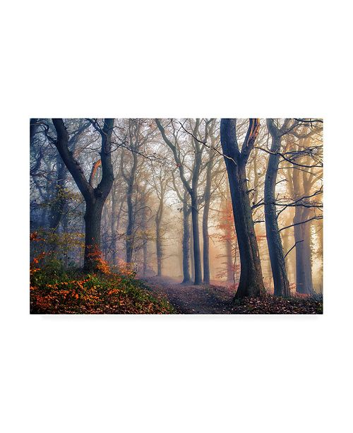 "Trademark Global Leif Londal The Forest Path Canvas Art - 37"" x 49"""