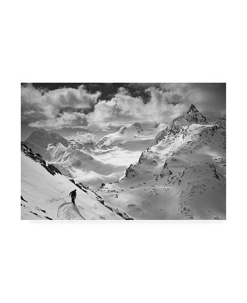 "Trademark Global Jaff Mazouni Into the Wild Snow Canvas Art - 37"" x 49"""