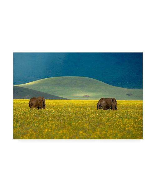 "Trademark Global E Amer Elephant Pair Canvas Art - 20"" x 25"""