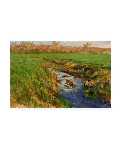 "Trademark Global Michael Budden Spring Fields River Canvas Art - 20"" x 25"""