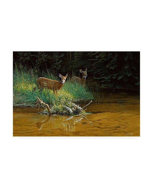 """Trademark Global Michael Budden Fawn Brook Canvas Art - 15"""" x 20"""""""