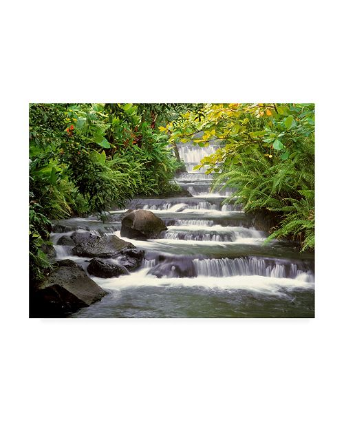 "Trademark Global Monte Nagler Terraced Falls Canvas Art - 20"" x 25"""