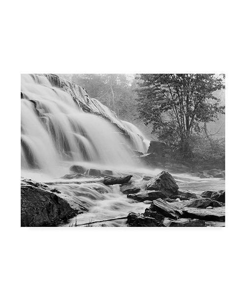"Trademark Global Monte Nagler Bond Falls and Rocks Canvas Art - 20"" x 25"""