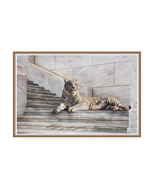"""Trademark Global Monte Nagler Tiger on Steps Canvas Art - 20"""" x 25"""""""
