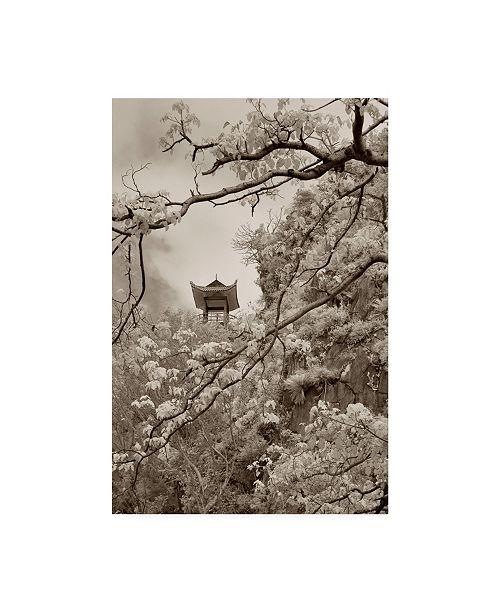 "Trademark Global Monte Nagler Pagoda in the Trees Da Nang Vietnam Monotint Canvas Art - 20"" x 25"""
