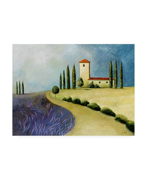 "Trademark Global Pablo Esteban Tuscan Villas Paint 3 Canvas Art - 36.5"" x 48"""