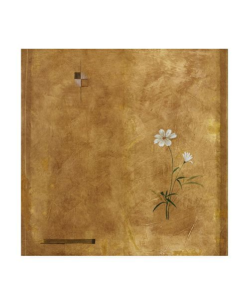 "Trademark Global Pablo Esteban White Flowers Over Brown Canvas Art - 19.5"" x 26"""