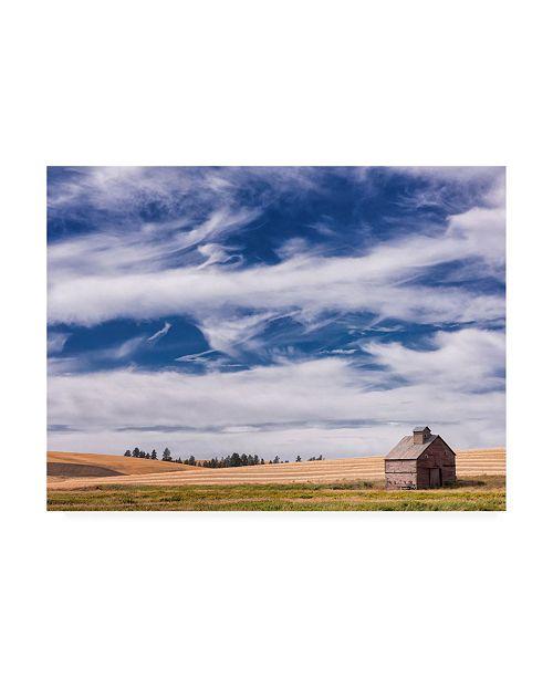 "Trademark Global PH Burchett Farm and Field I Canvas Art - 27"" x 33.5"""