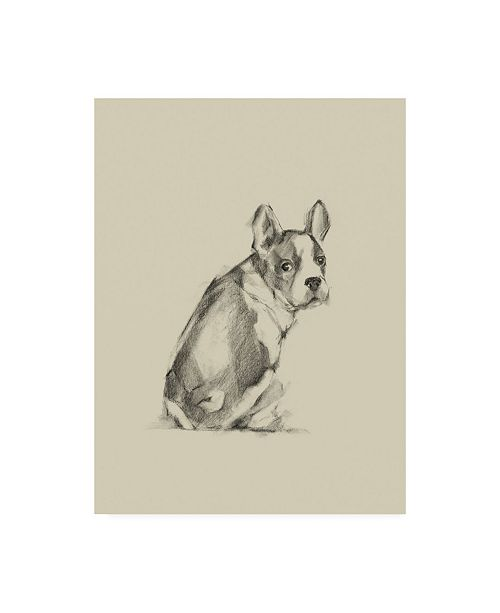 "Trademark Global Ethan Harper Puppy Dog Eyes IV Canvas Art - 15.5"" x 21"""