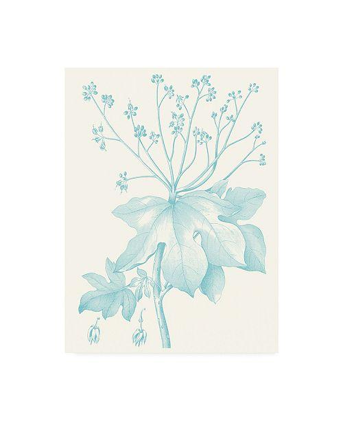 "Trademark Global Vision Studio Botanical Study in Spa I Canvas Art - 15.5"" x 21"""