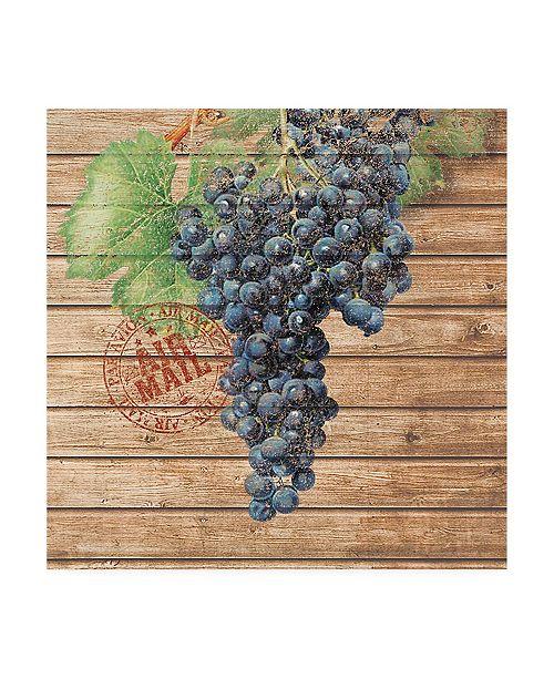 """Trademark Global Nobleworks Inc. Grape Crate I Canvas Art - 19.5"""" x 26"""""""