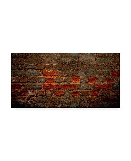 "Trademark Global Dan Ballard Texture 10 Canvas Art - 36.5"" x 48"""